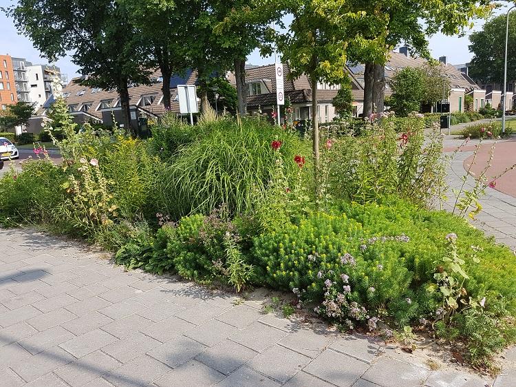 omvorming groenstrook gemeente Castricum